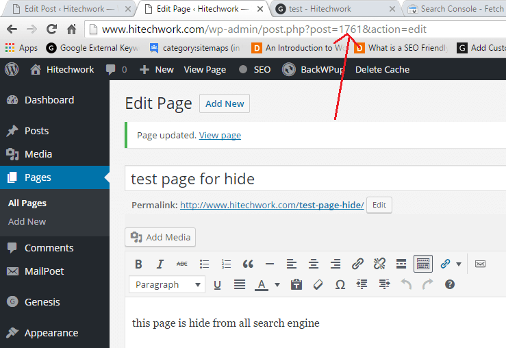 test example of hide page by no fallow no index tag